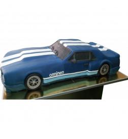 Tort Mustang